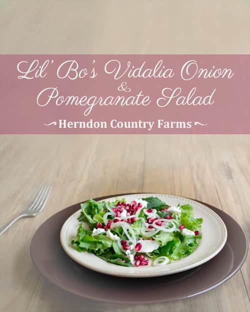 Vidalia Onion Pomegranate Goat Cheese Salad Recipe, featuring Lil' Bo's Vidalia Onions