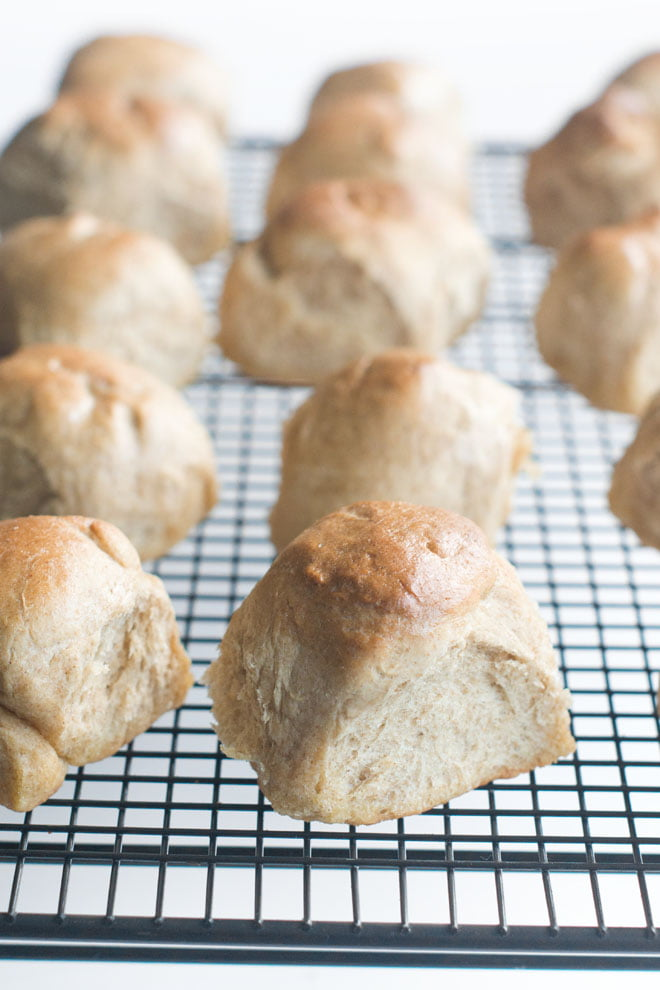 35 Minute Whole Wheat Rolls (from start to finish!)